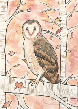 Autumn Owl - watercolor and pen 5x7