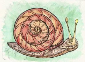 Little Snail - watercolor and pen 5x7