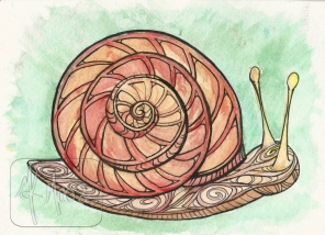 Little Snail - watercolor and pen 5x7