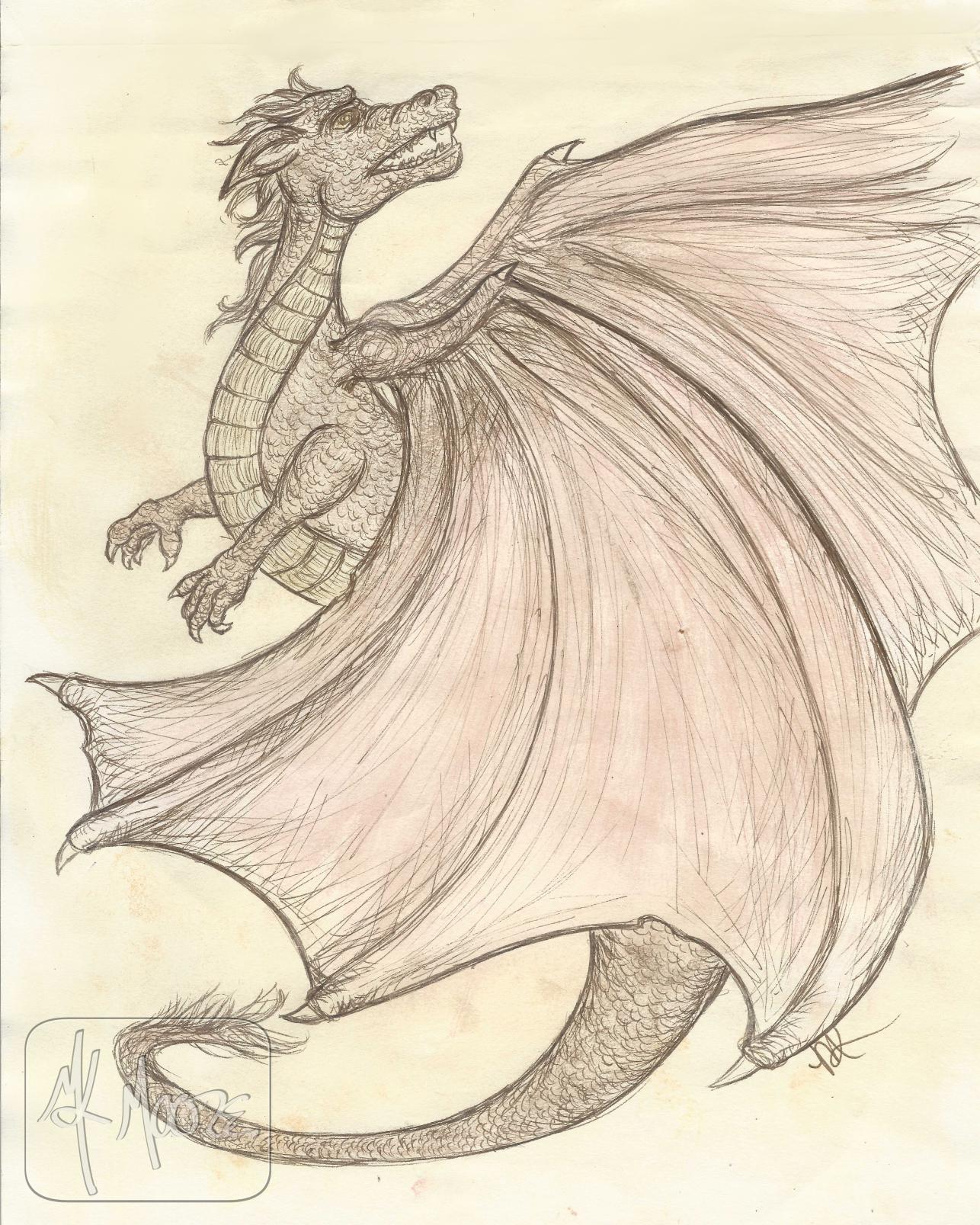Study_Dragon_mk